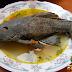 La Carachama el pez prehistórico de rico sabor
