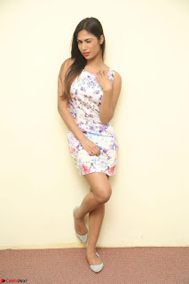 Nishi Ganda stunning cute in Flower Print short dress at Tick Tack Movie Press Meet March 2017 184.JPG