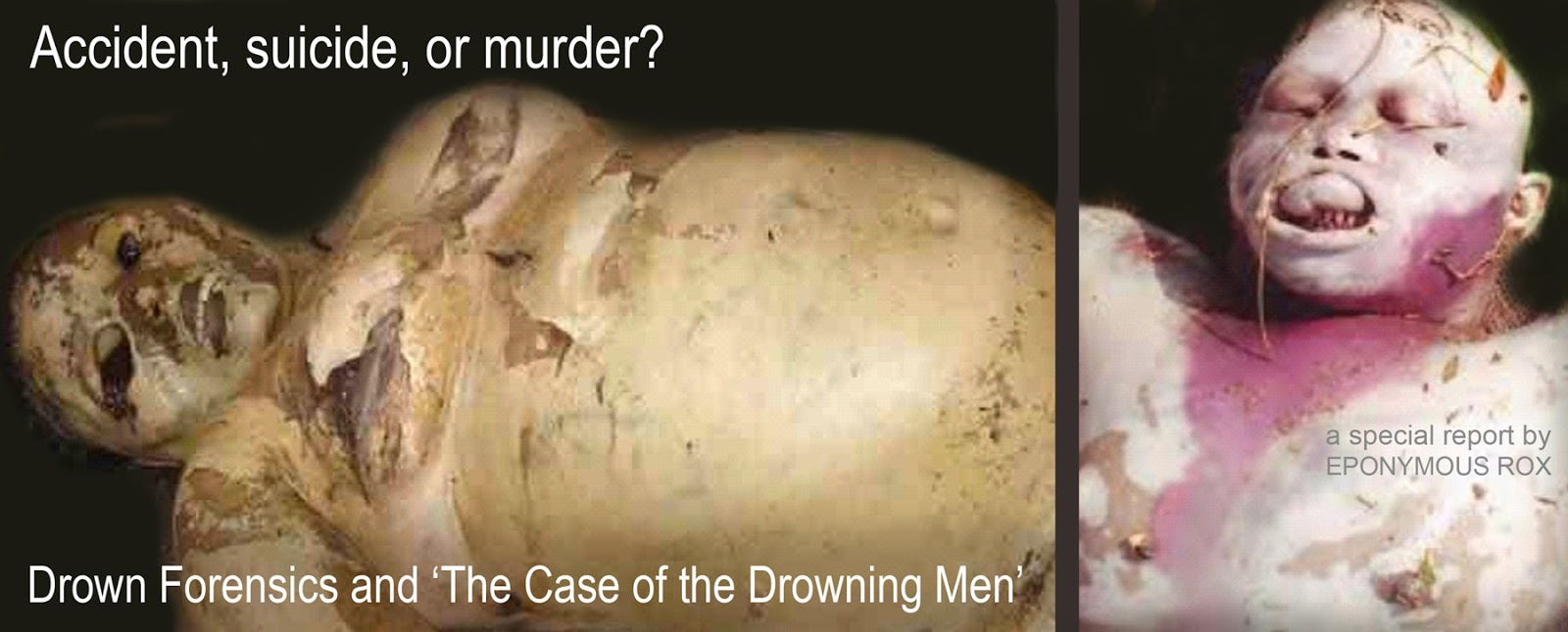 2016's Full-Color Expanded & Revised Edition of THE CASE OF THE DROWNING MEN: Investigating the Smiley Face Murders, by Eponymous Rox
