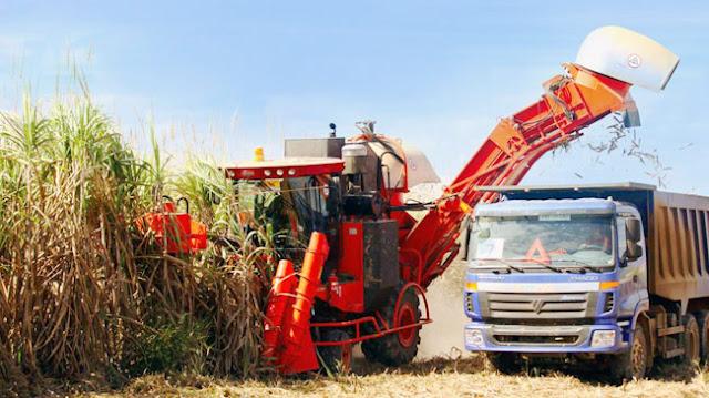 www.goldenmark.org - DN Việt Nam tận dụng lợi thế khi đầu tư nông nghiệp ở nước ngoài