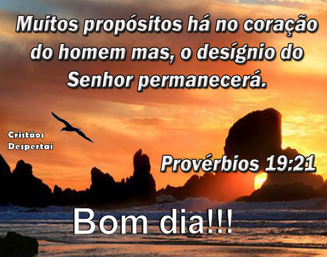 Bom Dia Princesa Do Senhor: JORNAL RIO NITERÓI NOTICIAS: Uma Quarta Feira Abençoada Na