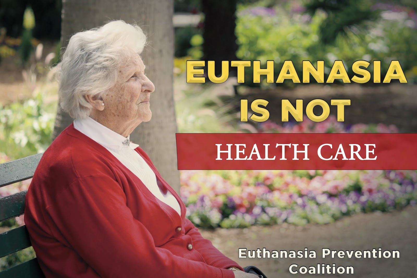 to be or not to be euthanasia Chapter 5 - the ethical debate  the ethical debate page 107 whether to assist suicide or perform euthanasia is not essentially a medical judgment, and falls .