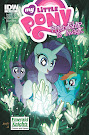 My Little Pony Friendship is Magic #8 Comic Cover Emerald Knight Variant