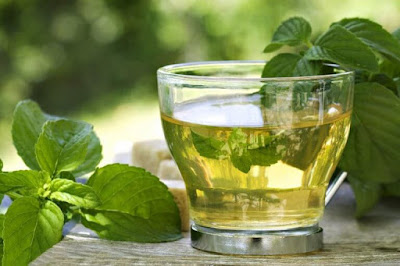 air-infus-teh-hijau