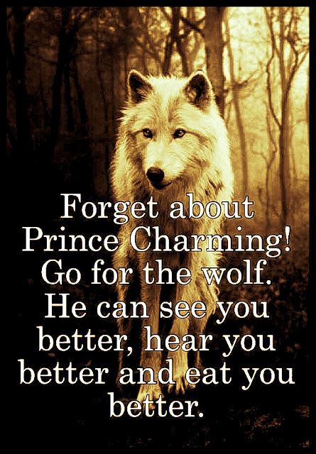 Forget about Prince Charming! Go for the wolf. He can see you better, hear you better and eat you better. #wolf #relationships #relatable #truth #quotes