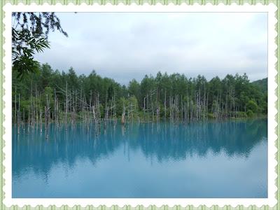 Blue Pond (青い池)