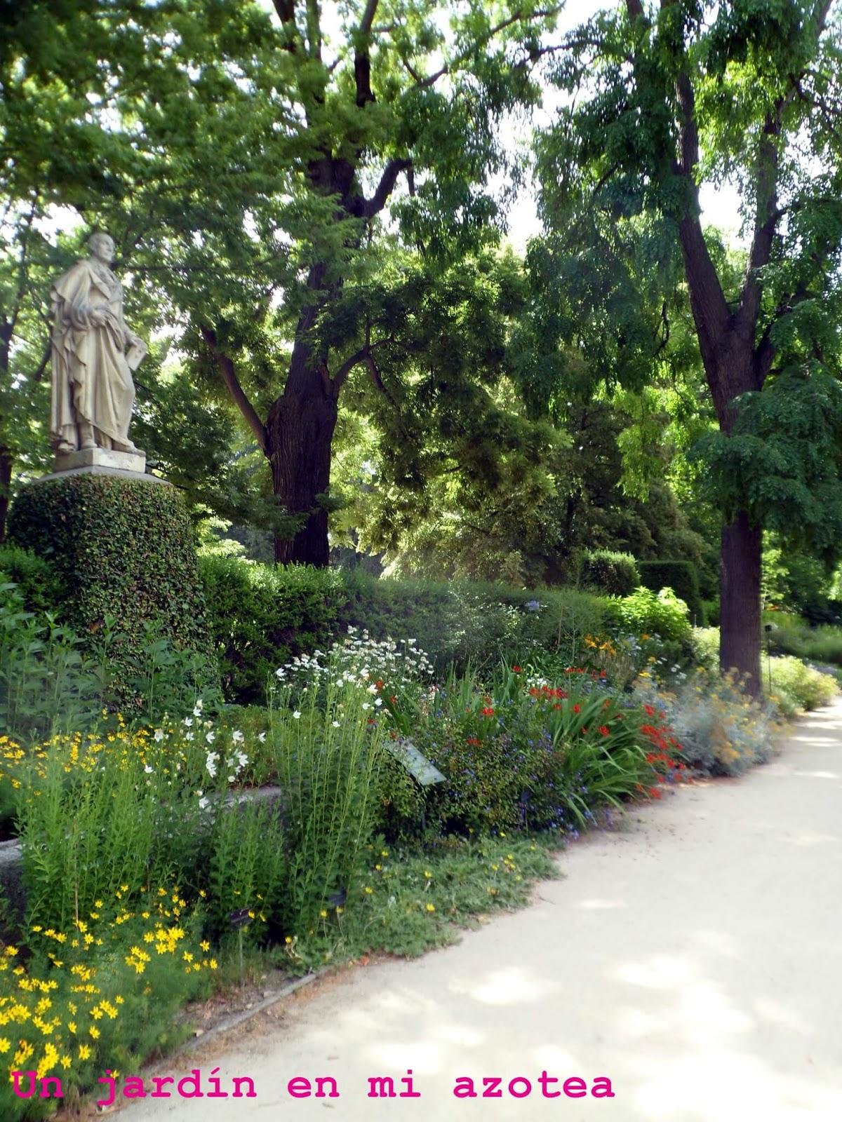 Un jard n en mi azotea flores en el real jard n bot nico for Jardin botanico cursos