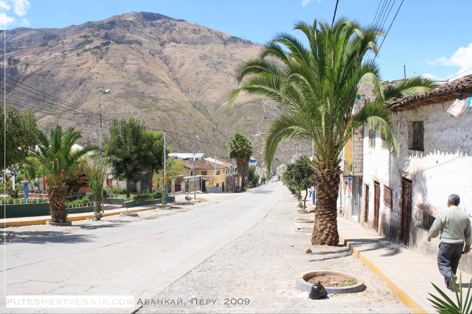 Пальмы на улице в Абанкае