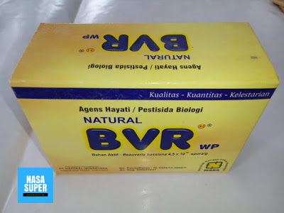 Grosir Produk Nasa NATURAL BVR