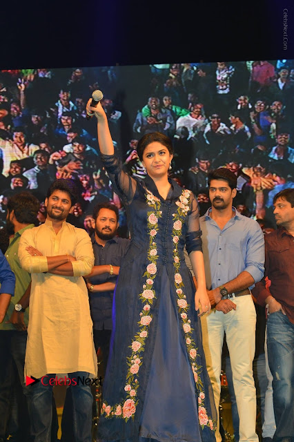 Nenu Local Audio Launch Stills  0022.JPG
