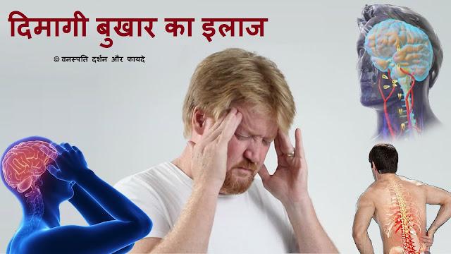दिमागी बुखार का इलाज