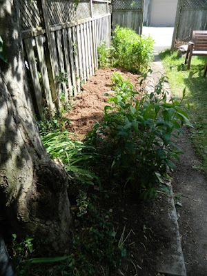 Riverdale Toronto back yard garden clean up after by Paul Jung Gardening Services