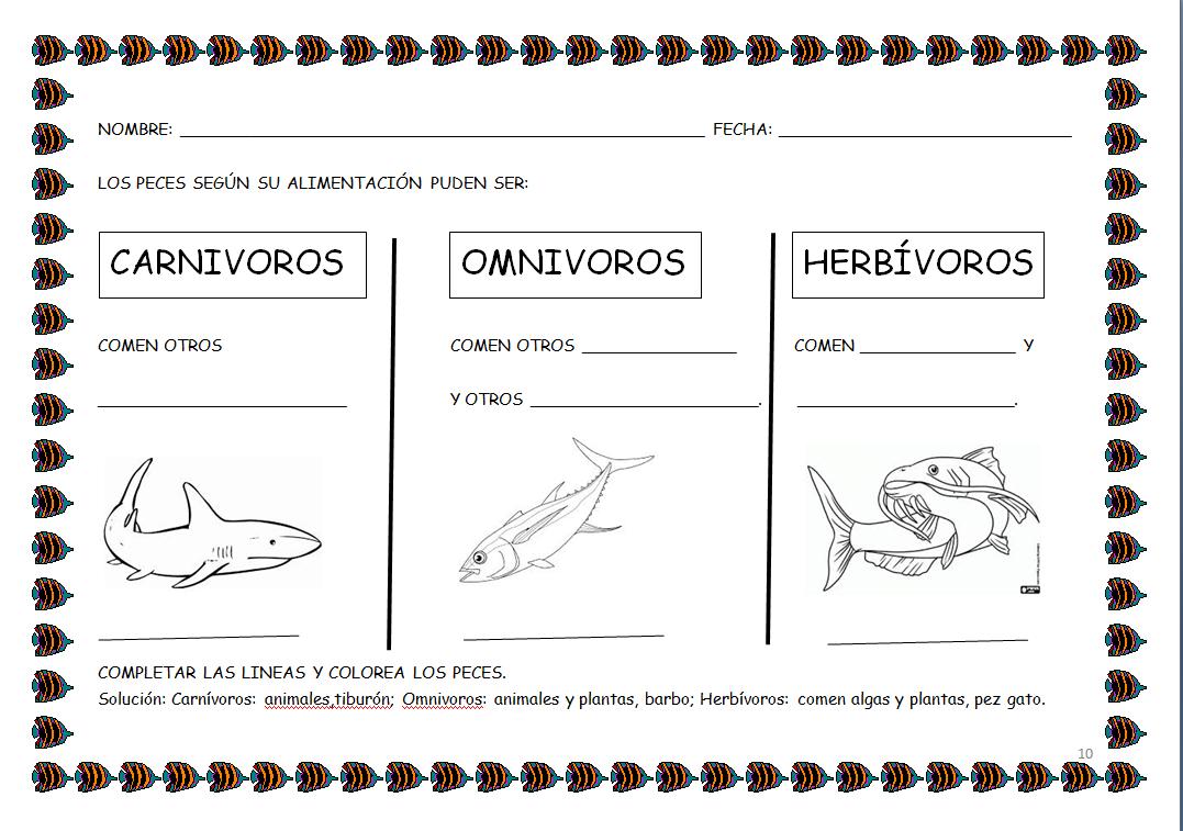 Animales Omnivoros Dibujos Para Colorear: Los Infantes Del Blas: SEGUIMOS APRENDIENDO COSAS DE