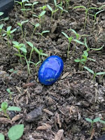 Mustika Ndaru Tunjung Biru