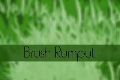 Kumpulan Brush Rumput Realistic Untuk Photoshop
