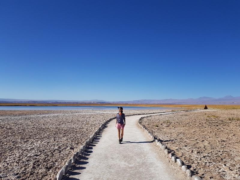 Deserto do Atacama, Laguna Cejar