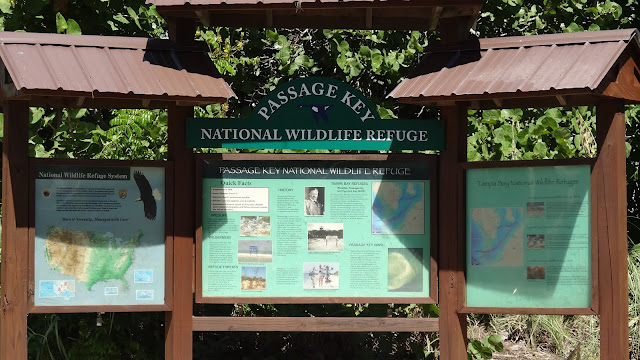 Tampa Bay National Wildlife Refuge, Florida USA