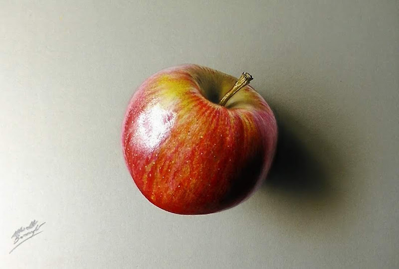 apple drawing marcello barenghi