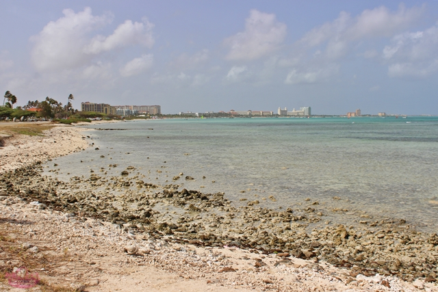 Passeios em Aruba com crianças