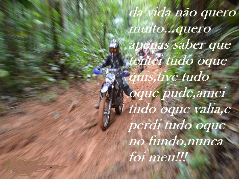 Da Vida Não Quero Muito Quero Apenas Saber Que Tentei: Bike De Magrão: Para Os Trilheiros