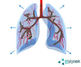 Ежедневные упражнения с применением тренировок на увеличение воздуха, кислорода, объема легких.