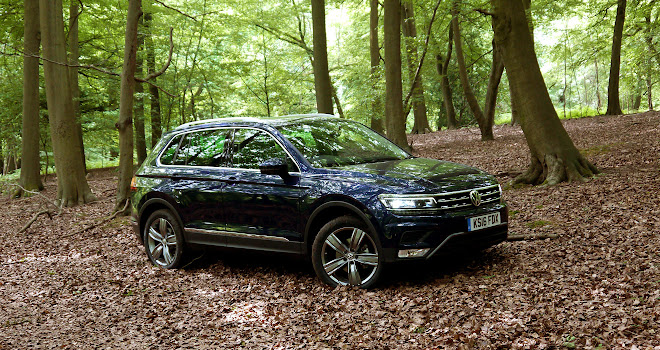 Volkswagen Tiguan in a forest