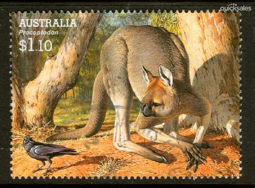 Los Marsupiales. Los \