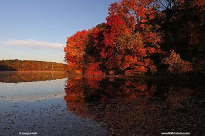 http://juergenroth.photoshelter.com/gallery-image/Massachusetts/G0000uFrJYrQlk.M/I0000sX5rm12.bog