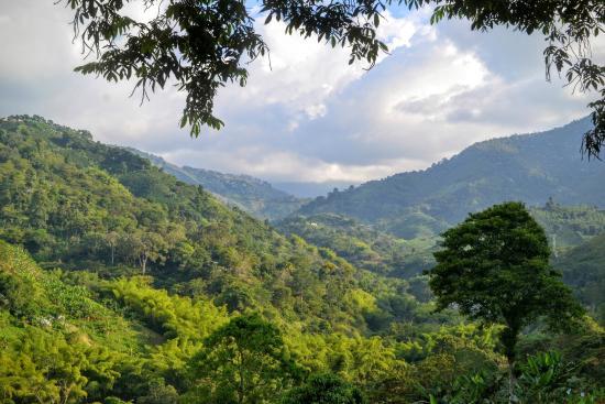 La Historia de Colombia - Lo mas Importante y informacion Basica