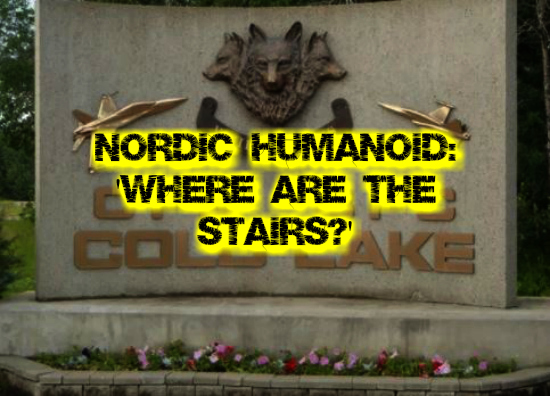 Nordic Humanoid: 'Where are the stairs?'