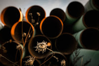 Despite the court ruling and backlash from land owners and Native American tribes, TransCanada says it is committed to building the Keystone XL pipeline. (Credit: Andrew Burton/Getty Images) Click to Enlarge.