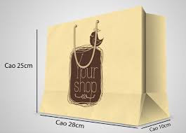 thiết kế túi giấy kraft đẹp