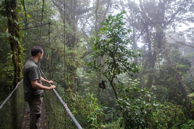 En un puente colgante del parque nacional Volcán Tenorio, Costa Rica