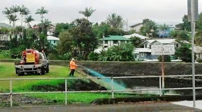 Hilo, Hawaii 2015