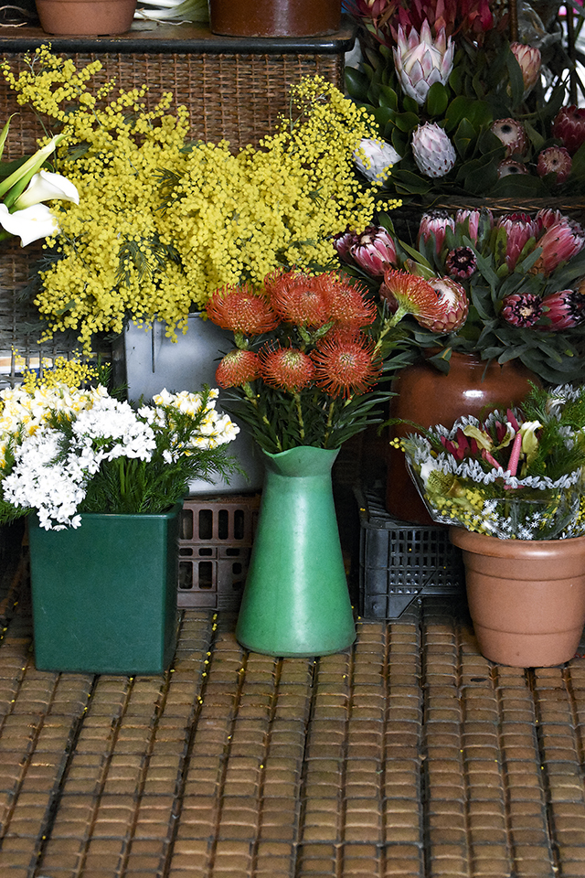 flowermarket,madeira,flowersofmadeira,madeiraparadiseisland,paradise,paradiseisland,red,redflower,eden,