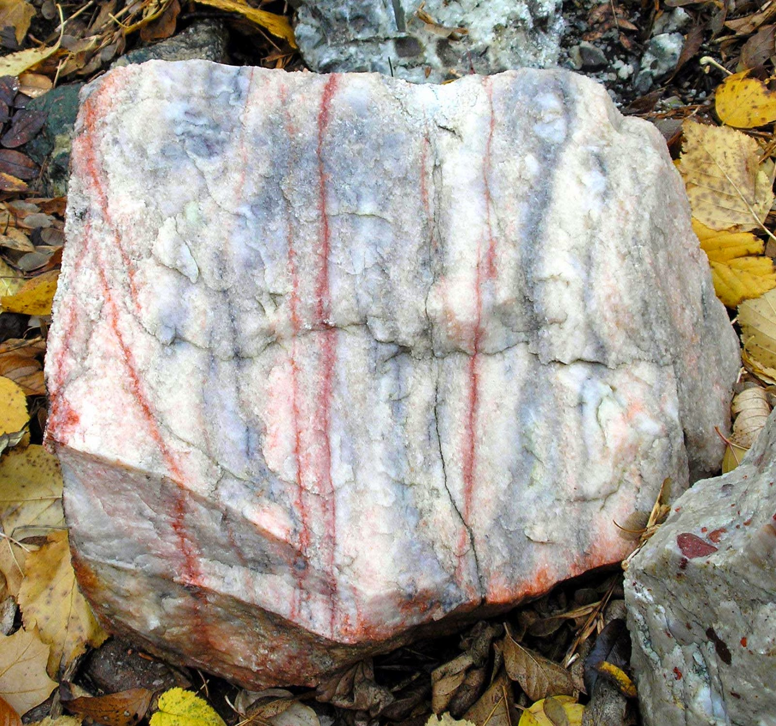 Marble Metamorphic Rock : Marble learning geology