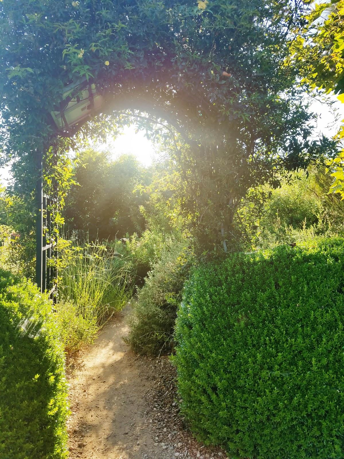 Arlington Gardens   The Bella Insider