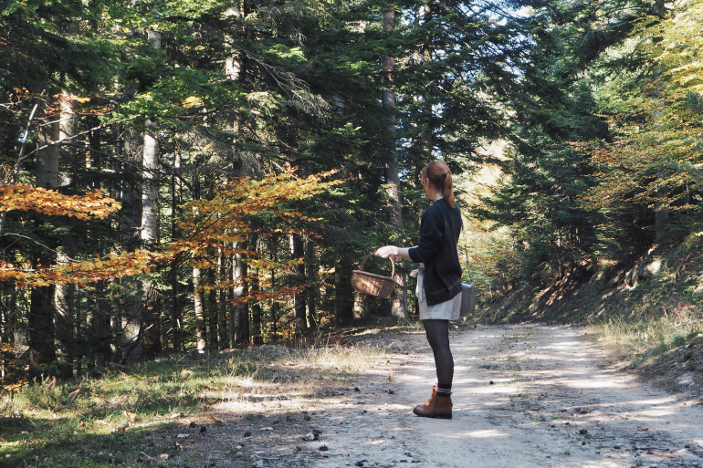Promenade en forêt à l'automne, en Ardèche