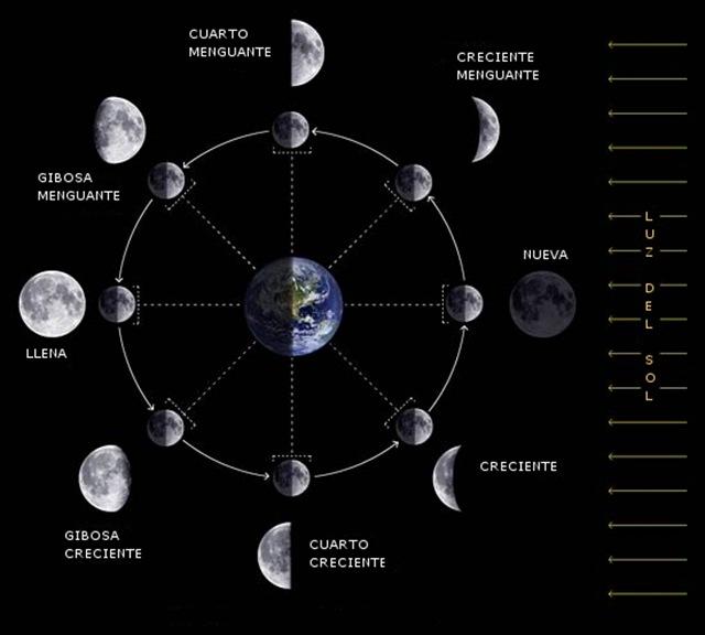 DIARIO DE UN KINESIOLOGO HOLISTICO: Vacunas. Ciclo Lunar y..