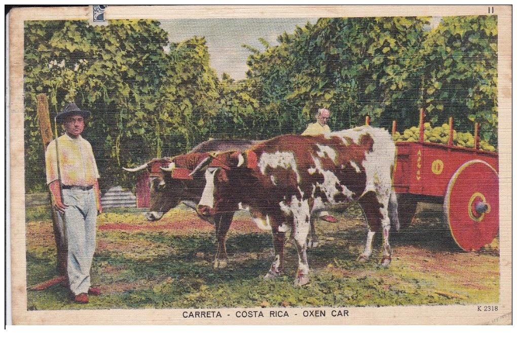 El costarricense constantino lascaris