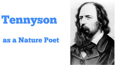 """Discuss how Tennyson visualises the relationship between man and nature.    Alfred Tennyson was a great English poet of the nineteenth century. One of the factors that lie at the root of his greatness is his treatment of nature. In almost all of his poems, long or short, nature plays a dominant role. Tennyson's treatment of nature is different from Romantic poets'. He does not find any divine spirit as Wordsworth did. Unlike Shelley he does not perceive any spirit of love in nature. Nature does not offer him a refuge from the injustice of human society. His treatment of nature is characterized by realism and accuracy. He describes natural scenery as setting of his poem and as an aid to heighten a mood or feelings.  """"The Lotos Eaters"""" The Lotos Eaters"""" is a noted poem by Tennyson. In it the poet tries to convey the mood of lethargy and drowsiness. The poem is about the feelings of a group of soldiers who are returning home with their leader Ulysses after the war of Troy. They come to a land where its inhabitants eat a fruit called lotos and lead a life of melancholy. The poet describes the landscape as a reflection of this mood. There it seemed always afternoon"""" In this poem the poet shows his skill in describing nature. He marks every detail of a wood, its trees, fruits, lowers and the colour they assume in different parts of the day-at ,at noon, at night, and in different parts of the year. Such description provides setting of the poem, adorns the piece and helps to reflect the feelings. It appears that the whole poem is a painted picture. But it is more than a picture. It is a speaking picture. Here the description of nature is more detailed. It creates monotony in the reader's mind But the poet's intention is to make such a feeling in the reader's mind also.  Locksley Hall Similarly, in Locksley Hall, he describes great Orion, the curlew and the moor land to give an impression that Locksley Hall stands in the lap of nature. The poet excellently describes the beau"""