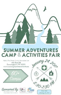 Summer Adventure Camp and Activities Fair Flyer