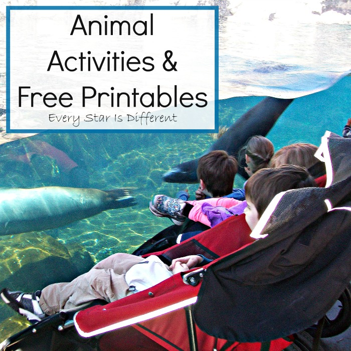 Animal Activities & Free Printables
