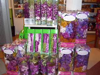 Орхидеи в Таиланде