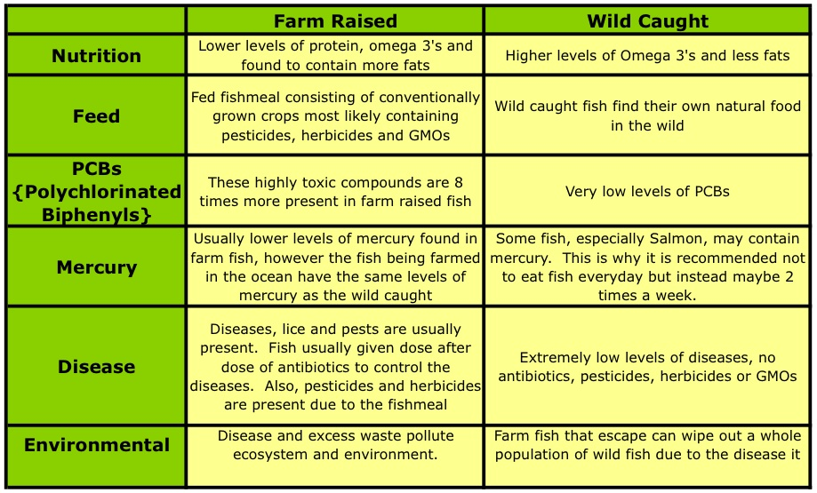 Why you Should Eat Wild Caught Fish Instead of Farm Raised Life at