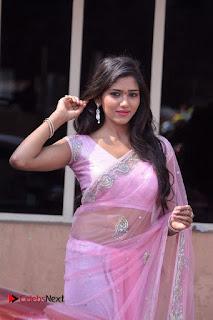 Telugu Actress Shalu Chourasiya Stills in Cute Pink Saree at Pochampally IKAT Art Mela  0017.jpg