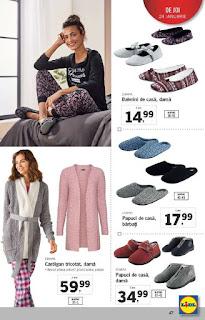 CATALOG LIDL 21 - 27 ianuarie 2019 promotii papuci de dama