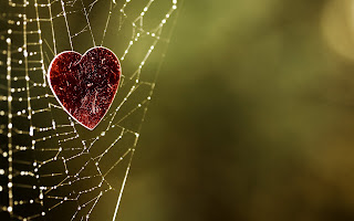 My heart stuck in your web of love