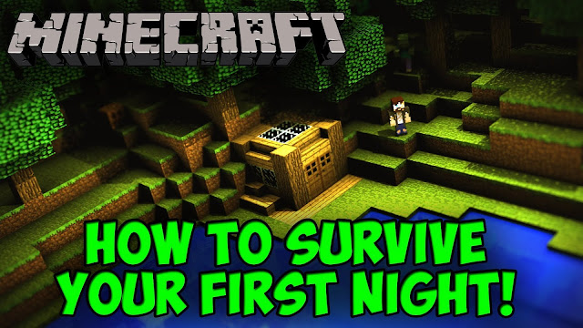Surviving Your First Night In Minecraft