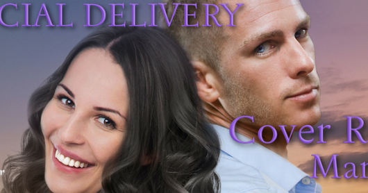 Cover Reveal - Special Delivery by Judi Lynn!